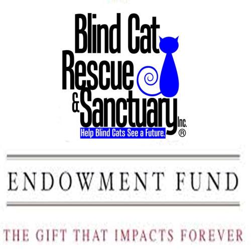 Blind Cat Rescue Sanctuary